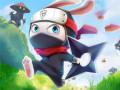 Lojra Ninja Rabbit